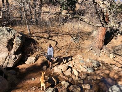 Cudi having a blast in the creek near Mesa Ave/Seven Falls